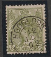 Nederland 1899  NVPH Nr. 57  Met Stempel Hoogloon - Used Stamps