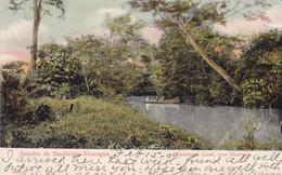 Saludes De Bluefields Deadman Creek Nicaragua Sent To Sweden 1909 - Ecuador