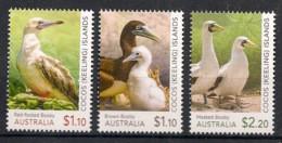 Cocos - 2020 - N°Yv. Xxx - Oiseaux / Birds - Neuf Luxe ** / MNH / Postfrisch - Gabbiani