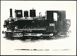 Régi Mozdonyok, 3 Db Modern Előhívás, 13×18 és 16×22 Cm - Autres Collections
