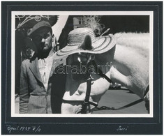1939 Juci A Ló, Kalapban, Portréfotó Albumlapon, 8x11 Cm - Autres Collections