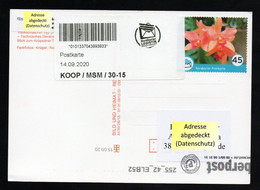 BRD - Privatpost - Nordkurier / Biberpost - Gel. Karte - Orchidee Orchid Orchidée - Orchideen