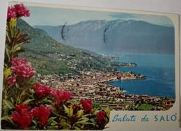 Salò - Lago Di Garda - 86 - Formato Grande Viaggiata – E 17 - Italia