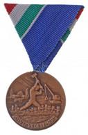 """1970. """"Árvízvédelemért"""" Br Kitüntetés Mellszalagon, Eredeti Tokban T:1 NMK 663. - Coins & Banknotes"""
