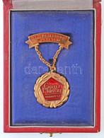 """~1970-1980. """"Ganz Mávag Budapest - Kiváló Társadalmi Munkáért"""" Aranyozott, Zománcozott Fém Jelvény, Dísztokban T:1- - Coins & Banknotes"""