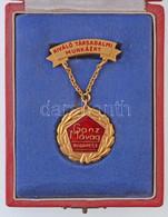 """~1970-1980. """"Ganz Mávag Budapest - Kiváló Társadalmi Munkáért"""" Aranyozott, Zománcozott Fém Jelvény, Dísztokban + """"Ganz M - Coins & Banknotes"""
