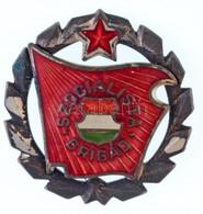 """DN """"Szocialista Brigád"""" Jelvény, Ezüstözött Koszorúval (27mm) T:3 - Coins & Banknotes"""