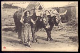 Ramalde / Camponesa C/ Carro De Bois COSTUMES De PORTUGAL. Edição Estrela Vermelha. Old Postcard With OX CART (Porto) - Porto