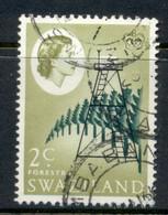 Swaziland 1962 QEII Pictorials 2c FU - Swaziland (1968-...)