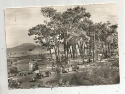 Cp , Automobiles , 66 , ARGELES SUR MER , Le Golf Miniature Et Les Pins , écrite - Toerisme