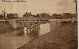 SINT-LAUREINS « Moershoofdebrug » - Uitg. Wwe Vandenfontyne-Planke - Bélgica