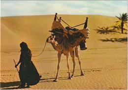 République Islamique De Mauritanie - Méhariste - Mauritania