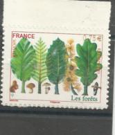 564   Europa Les Forets  Bdf Luxe Sans Ch (586) - Frankreich