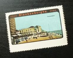 Germany Poster Stamp Belgium Blankenberge Panorama General View B5 - Erinnofilia