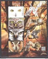 Poland  2017 - Birds - Owls - Mi.ms 270 - MNH(**) - Blocks & Sheetlets & Panes