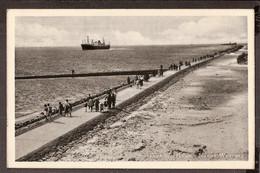 Hoek Van Holland - Nieuwe Waterweg 1955 - Hoek Van Holland