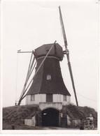 Weerdinge Molen De Hondsrug - Holanda