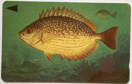 Bahrain 39BAHQ Streaked Rabbitfish Painting ( Big Number C/n ) - Bahrein