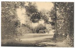 Irchonwelz (Ath) (M 5637)  Parc Du Château - Ath