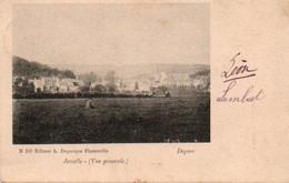 Jemelle Vue Générale Rare Circulé En 1909 - Rochefort