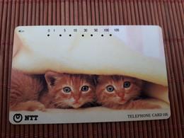 Phonecard  Cats Used Rare - Gatos