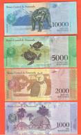 1000 2000 5000 10000 Bolivares Venezuela 4 Banconote Differenti 2017 E 2018 Animali Animals Orso Tartarughe Gufo Tapiri - Venezuela