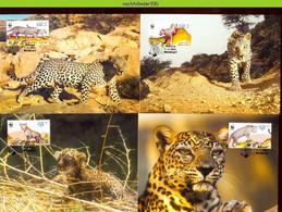 Ngb341mb WWF FAUNA WILDE KAT WILD CAT ARAB LEOPARD OMAN 2004 MAX - Tarjetas – Máxima