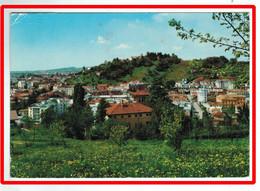 25964  CPM    CONEGLIANO  ; Panorama  !!    Jolie  Carte Photo  1976    !!   ACHAT DIRECT !! - Treviso