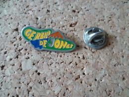 PIN'S   GERBIER  DE JONCS  ARDECHE - Pin's