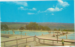 Watkins Glen State Park; View Of The Olympic Size Swimming Pool - Not Circulated. - NY - New York