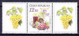 ** Tchéque République 2006 Mi 462 Zf I, (MNH) - Tchéquie