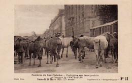 S38-013 Postières Du Sud Finistère - Concours De Chateaulin En 1925 - Supplément à La Bretagne Hippique - Horses