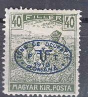 Hungary Debrecen Debreczin 1919 Mi#24 Mint Heavy Hinged - Debreczen