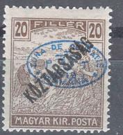 Hungary Debrecen Debreczin 1919 Mi#49 Mint Hinged - Debreczen