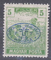Hungary Debrecen Debreczin 1919 MAGYAR POSTA Mi#65 Mint Hinged - Debreczen