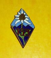 159° R.I.A, Dos Lisse, Marqué En Relief Et En V, Ciel Bleu,Régiment D'Infanterie Alpine, Losange à Ciel Bleu Et Monts Bl - Army