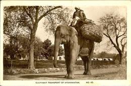 CARTE PHOTO LES ELEPHANTS SONT CHARGES DU TRANSPORT ELEPHANT TRANSPORT OF AFGHANISTAN - Afghanistan