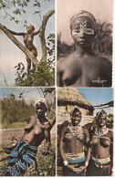 LOT 4 CPSM NOIR ET BLANC COULEUR EDITIONS HOA-QUI JEUNES FILLES AFRICAINES - Non Classificati