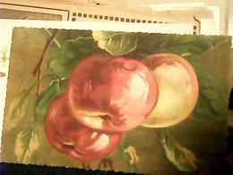 FRUTTA ILLUSTRATA MELE PESVHE ?  VB1930 HR10760 - Flowers, Plants & Trees