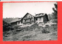 68 WILLER Sur THUR Cpsm Hotel Restaurant GOLDENMATT          227 Edit Photomaag - Sonstige Gemeinden