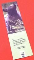 Signet  / Marque-page  Cet Ourson Comme Kouki Est Né Dans Les Pyrénées Centrales (180x50)mm - Lesezeichen