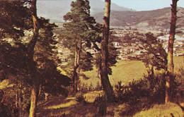 Bulgaria - Velingrad - In The Outskirts - Printed 1982 - Bulgaria