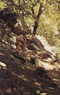 Bulgaria - Place Of Execution Of Vela Peeva In The White Rock Area - Printed 1982 - Bulgaria