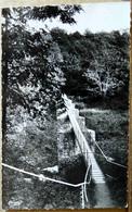 AIGREFEUILLE SUR MAINE PASSERELLE SUR LA MAINE CARTE DE 1965 - Aigrefeuille-sur-Maine