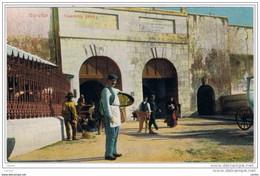 GIBRALTAR:  CASEMATES  GATES  -  FP - Gibilterra