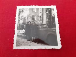 Dog And Womens - Car  - Doberman - Fotografía