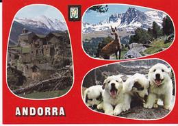 CPSM VALLS D' ANDORRA - Andorra