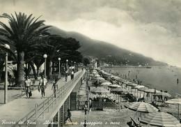 Alassio - Lotto 4 Cartoline Passeggiata Di Ponente - Savona