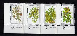 1978, UMM, Berries - Transkei