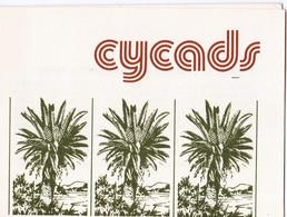 1980, UMM, Cycads Booklet - Transkei